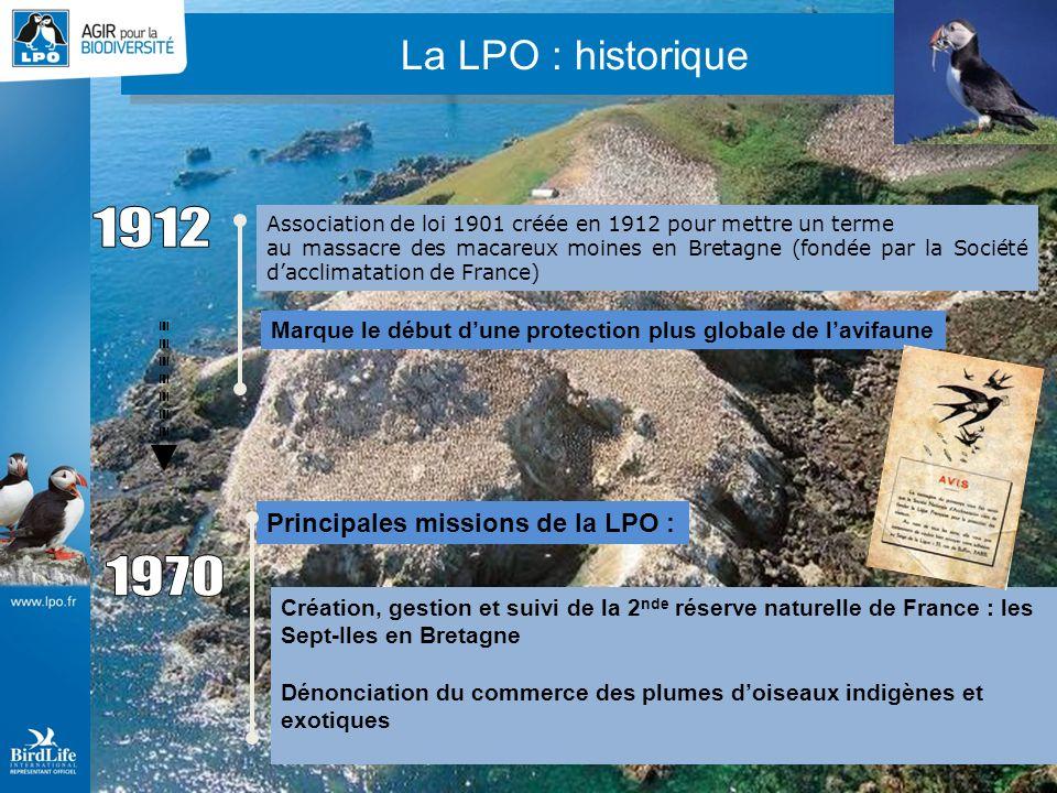 La LPO : petit historique Association de loi 1901 créée en 1912 pour mettre un terme au massacre des macareux moines en Bretagne (fondée par la Sociét
