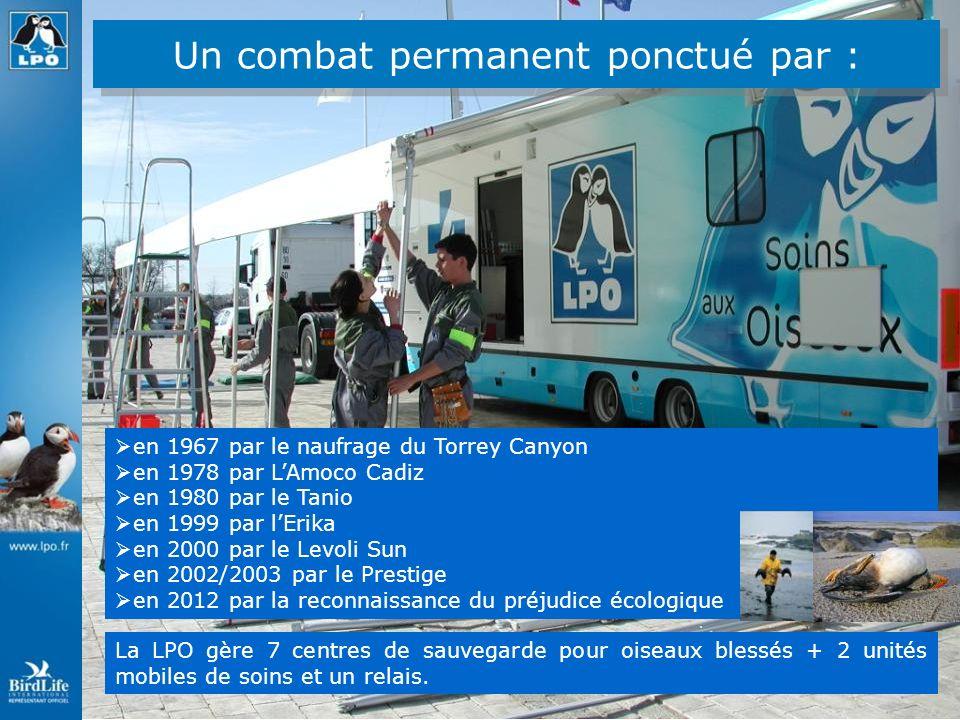 Présence dans 21 régions 77 départements Le réseau LPO 33 associations locales 8 antennes 10 groupes