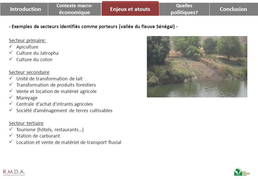 IntroductionConclusion Enjeux et atouts Contexte macro- économique Quelles politiques ? - Exemples de secteurs identifiés comme porteurs (vallée du fl
