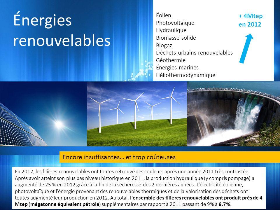 Énergies renouvelables Encore insuffisantes… et trop coûteuses En 2012, les filières renouvelables ont toutes retrouvé des couleurs après une année 2011 très contrastée.