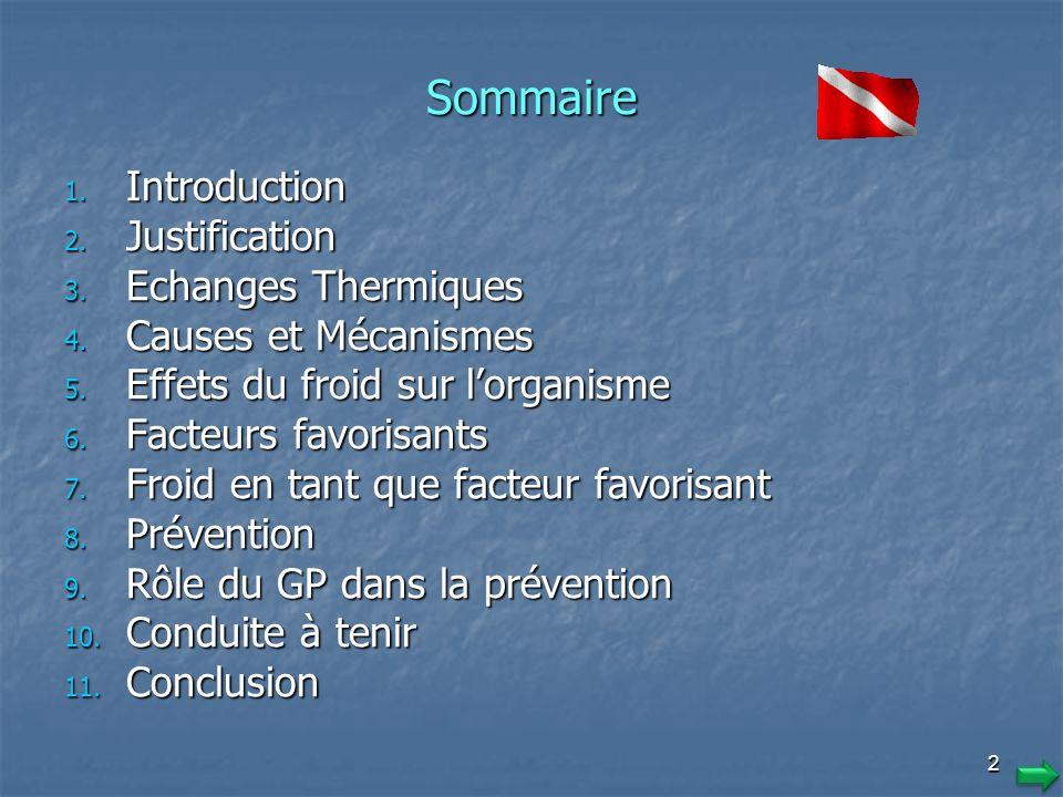 2 Sommaire 1.I ntroduction 2. J ustification 3. E changes Thermiques 4.