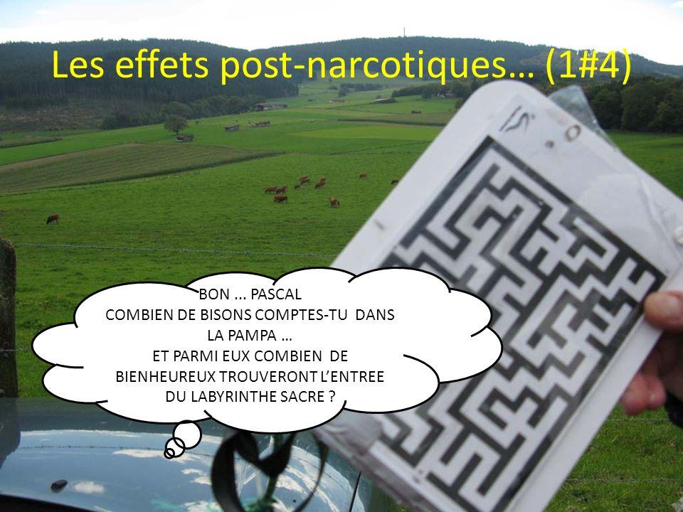Les effets post-narcotiques… (1#4) BON...