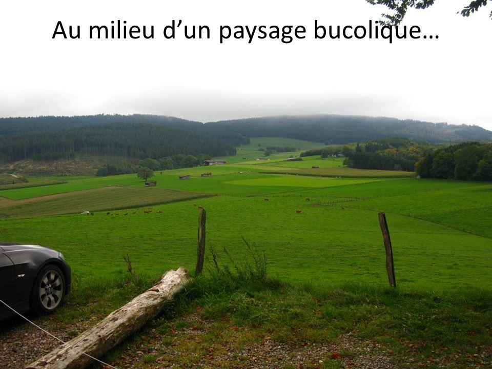 Au milieu dun paysage bucolique…
