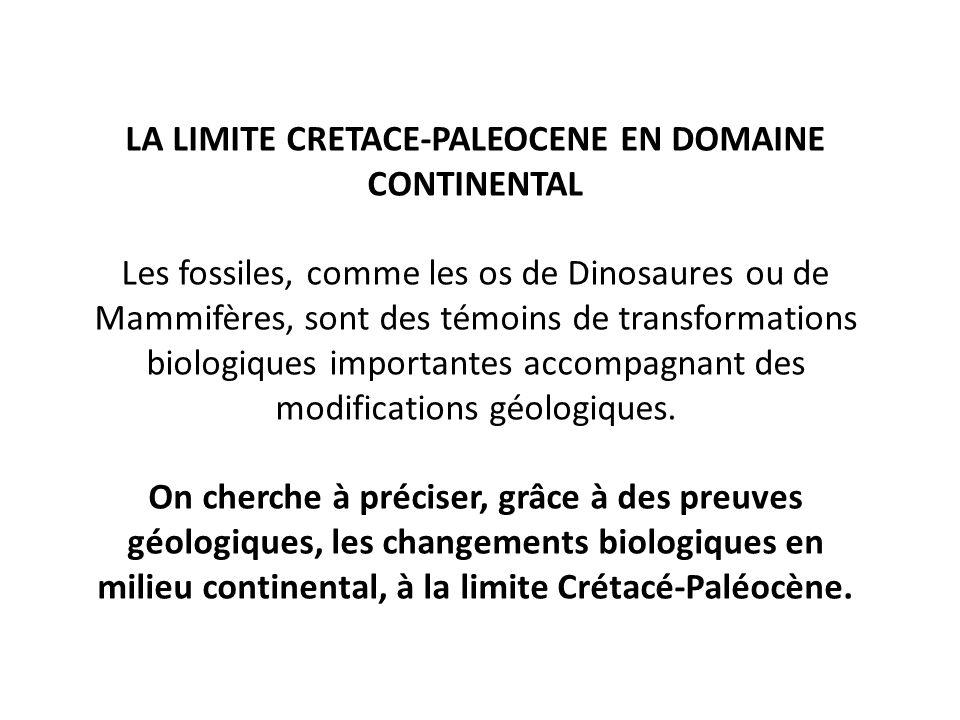 LA LIMITE CRETACE-PALEOCENE EN DOMAINE CONTINENTAL Les fossiles, comme les os de Dinosaures ou de Mammifères, sont des témoins de transformations biol