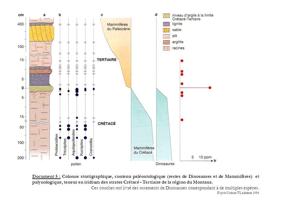 Document 5 : Colonne stratigraphique, contenu paléontologique (restes de Dinosaures et de Mammifères) et palynologique, teneur en iridium des strates