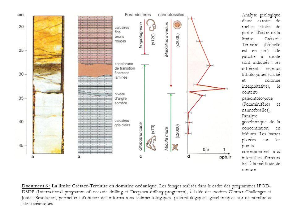 Analyse géologique d'une carotte de roches situées de part et d'autre de la limite Crétacé- Tertiaire (l'échelle est en cm). De gauche à droite sont i