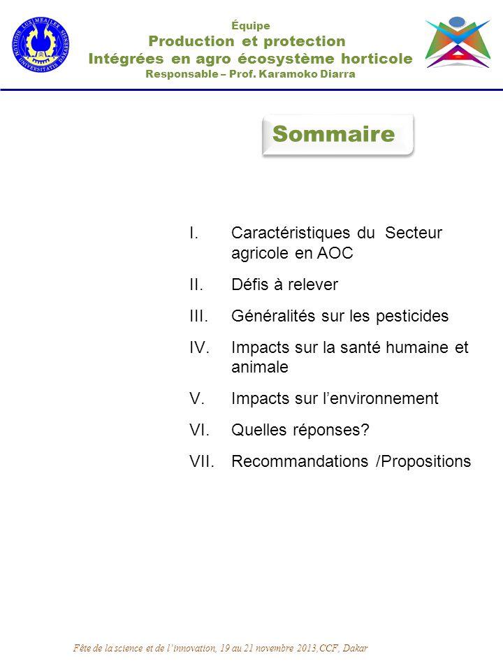 Sommaire Équipe Production et protection Intégrées en agro écosystème horticole Responsable – Prof. Karamoko Diarra I.Caractéristiques du Secteur agri
