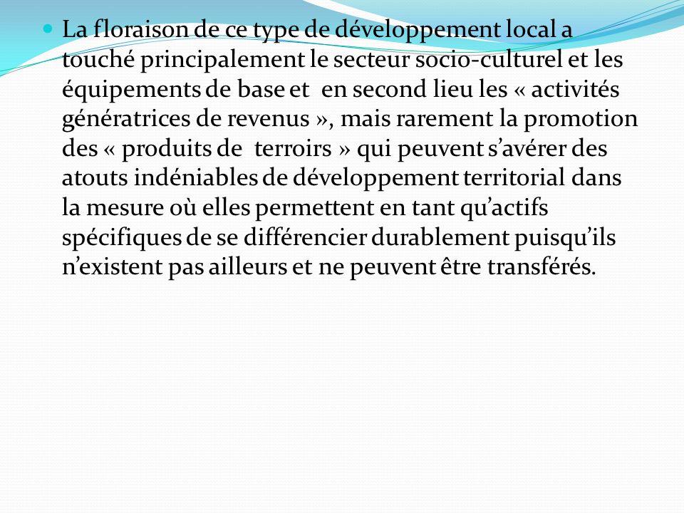 La floraison de ce type de développement local a touché principalement le secteur socio-culturel et les équipements de base et en second lieu les « ac