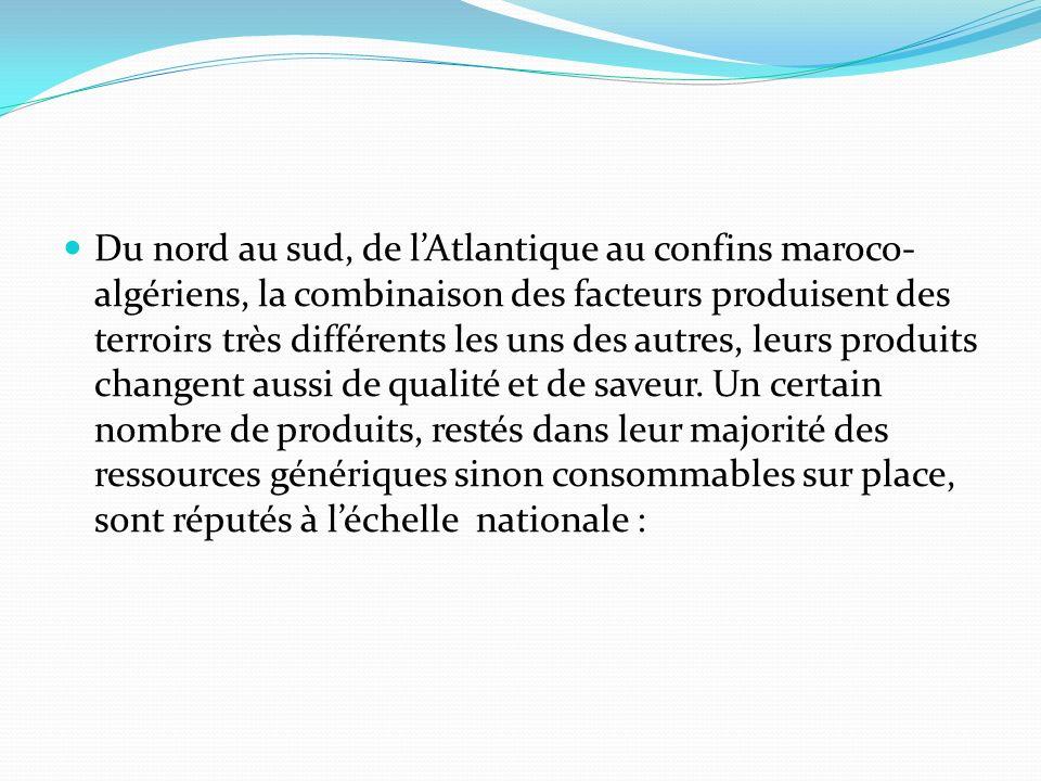 Du nord au sud, de lAtlantique au confins maroco- algériens, la combinaison des facteurs produisent des terroirs très différents les uns des autres, leurs produits changent aussi de qualité et de saveur.
