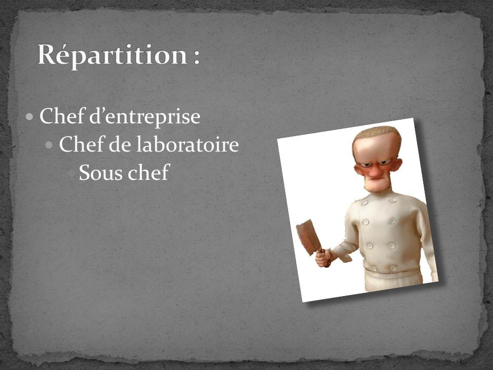 Chef dentreprise Chef de laboratoire Sous chef