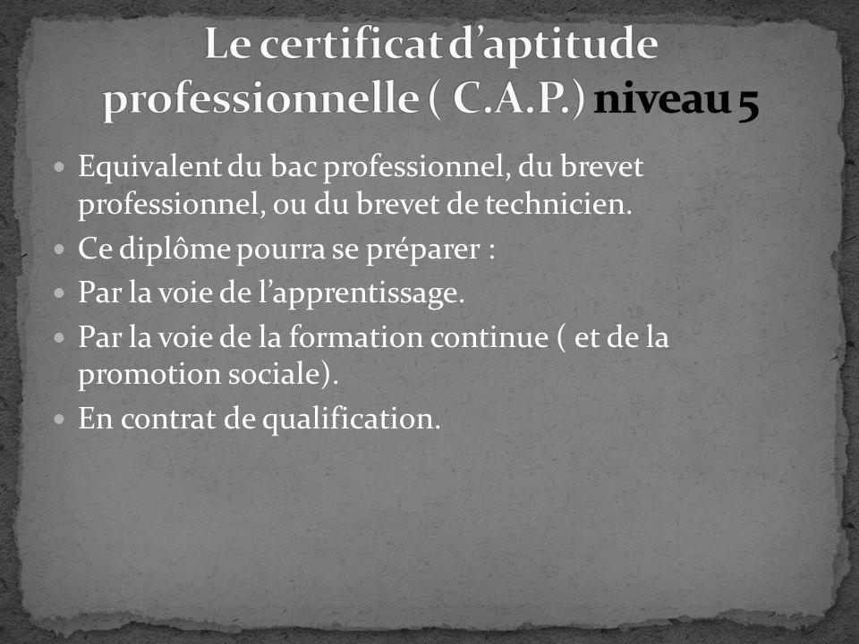Equivalent du bac professionnel, du brevet professionnel, ou du brevet de technicien. Ce diplôme pourra se préparer : Par la voie de lapprentissage. P