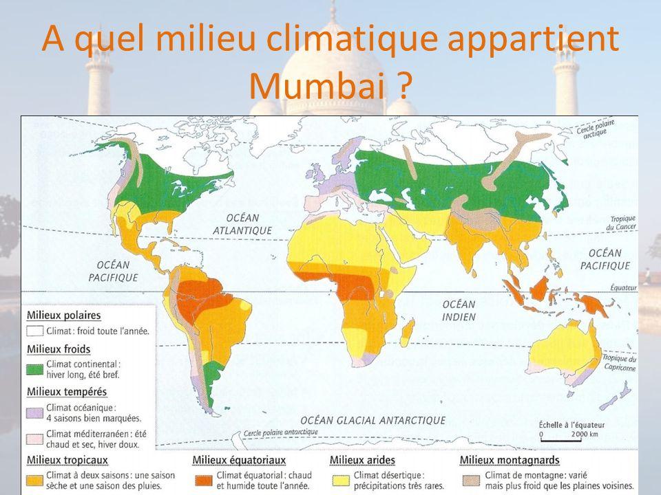 Quel est le relief dominant dans la région de Mumbai ?