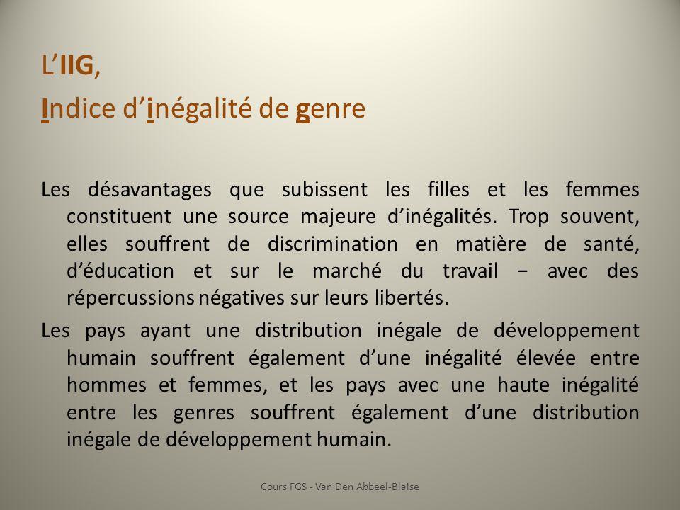 LIIG, Indice dinégalité de genre Les désavantages que subissent les filles et les femmes constituent une source majeure dinégalités.