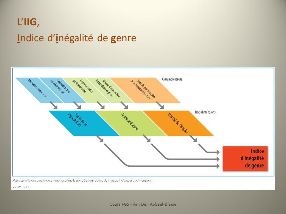 LIIG, Indice dinégalité de genre Cours FGS - Van Den Abbeel-Blaise