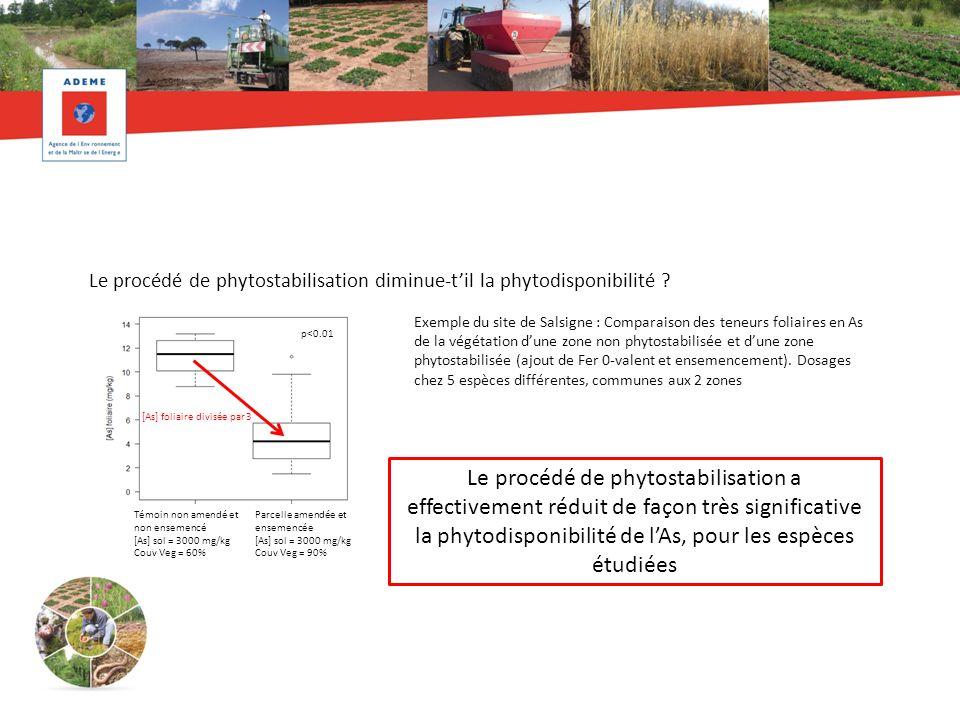 Le procédé de phytostabilisation diminue-til la phytodisponibilité ? Exemple du site de Salsigne : Comparaison des teneurs foliaires en As de la végét