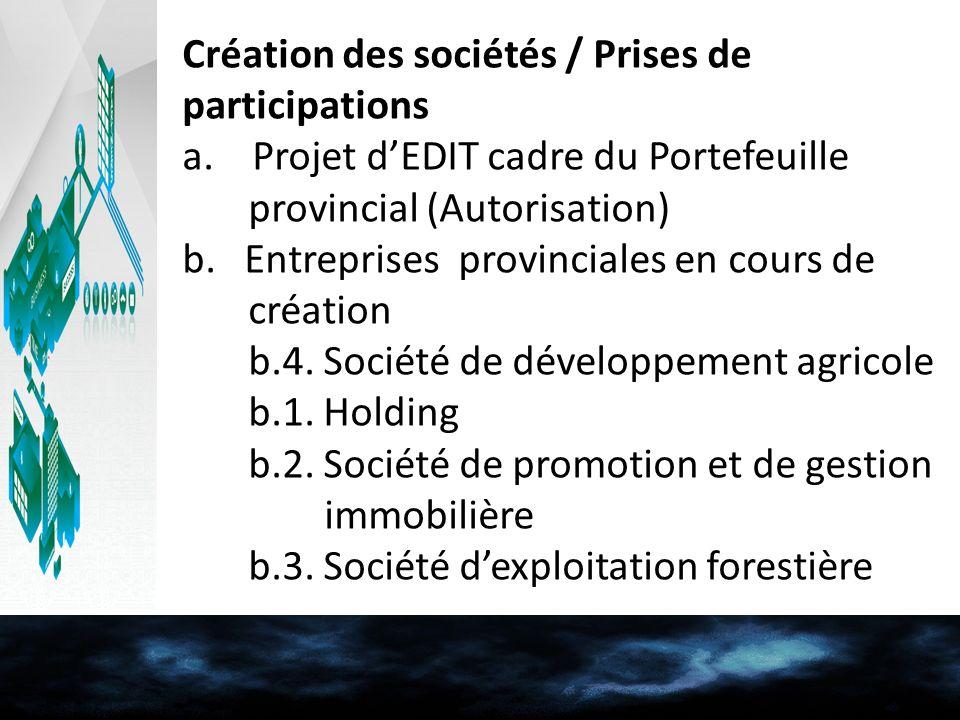 Création des sociétés / Prises de participations a. Projet dEDIT cadre du Portefeuille provincial (Autorisation) b. Entreprises provinciales en cours