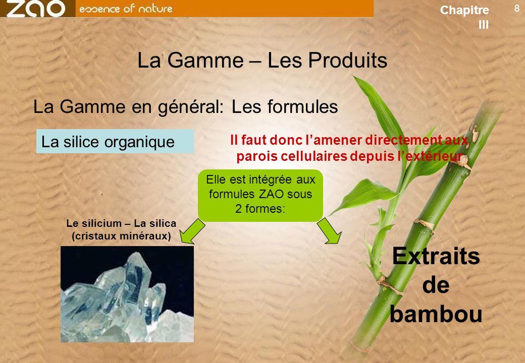 8 La Gamme – Les Produits Il faut donc lamener directement aux parois cellulaires depuis lextérieur La silice organique La Gamme en général: Les formules Elle est intégrée aux formules ZAO sous 2 formes: Le silicium – La silica (cristaux minéraux) Extraits de bambou Chapitre III