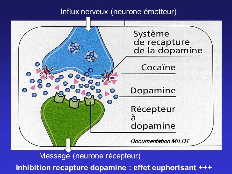 Influx nerveux (neurone émetteur) Message (neurone récepteur) Inhibition recapture dopamine : effet euphorisant +++ Documentation MILDT