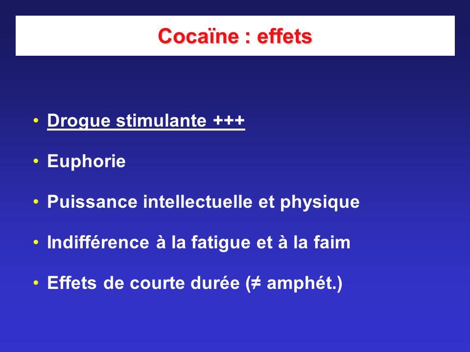Cocaïne : effets Drogue stimulante +++ Euphorie Puissance intellectuelle et physique Indifférence à la fatigue et à la faim Effets de courte durée ( a