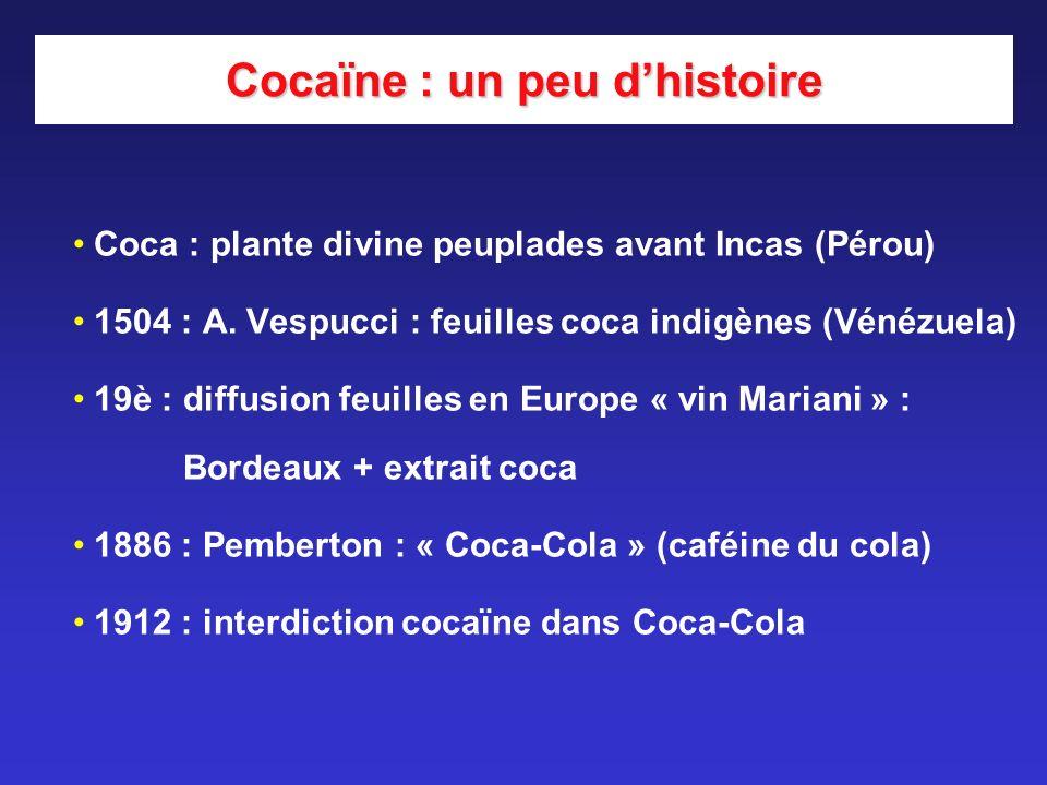Cocaïne : un peu dhistoire Coca : plante divine peuplades avant Incas (Pérou) 1504 : A. Vespucci : feuilles coca indigènes (Vénézuela) 19è : diffusion