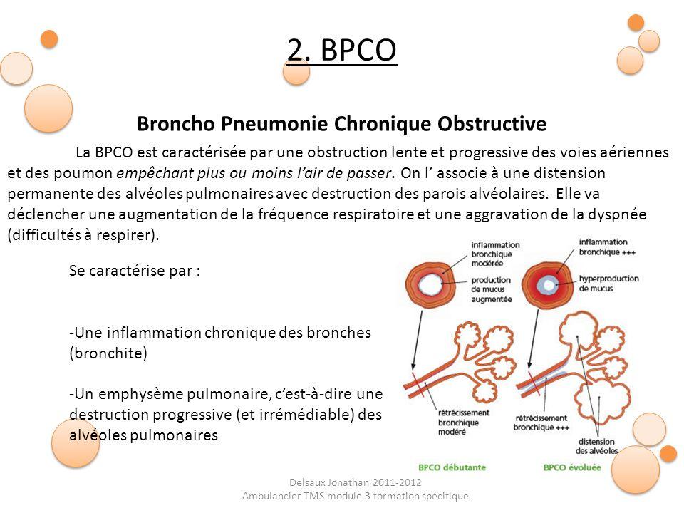 Delsaux Jonathan 2011-2012 Ambulancier TMS module 3 formation spécifique Broncho Pneumonie Chronique Obstructive 2. BPCO La BPCO est caractérisée par