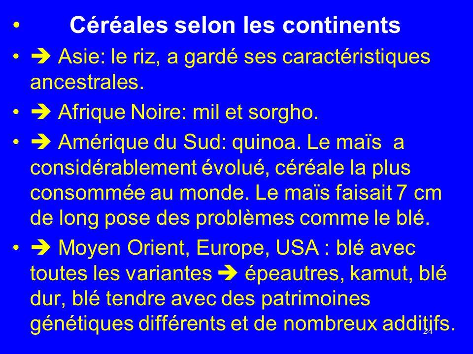 Céréales selon les continents Asie: le riz, a gardé ses caractéristiques ancestrales. Afrique Noire: mil et sorgho. Amérique du Sud: quinoa. Le maïs a
