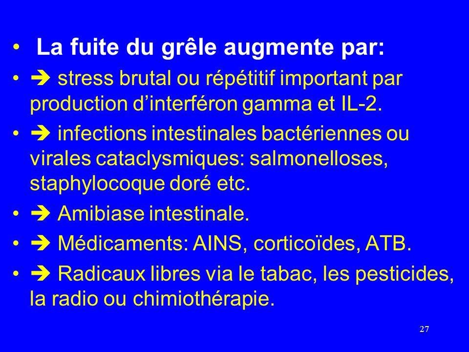 La fuite du grêle augmente par: stress brutal ou répétitif important par production dinterféron gamma et IL-2. infections intestinales bactériennes ou