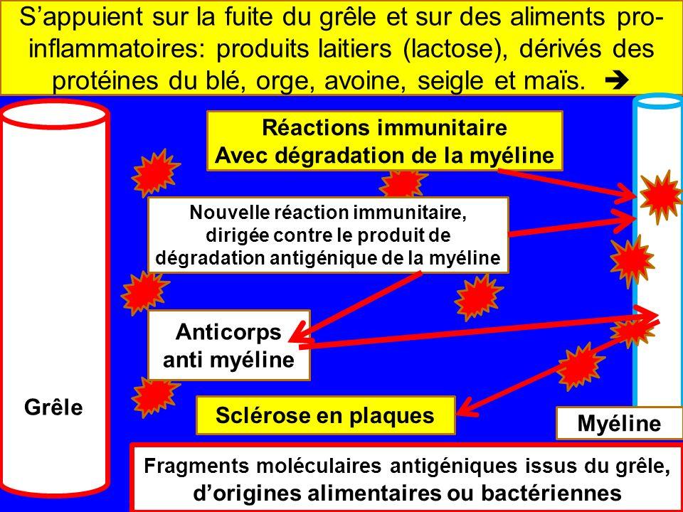 Les mécanismes des maladies autoimmunes Sappuient sur la fuite du grêle et sur des aliments pro- inflammatoires: produits laitiers (lactose), dérivés