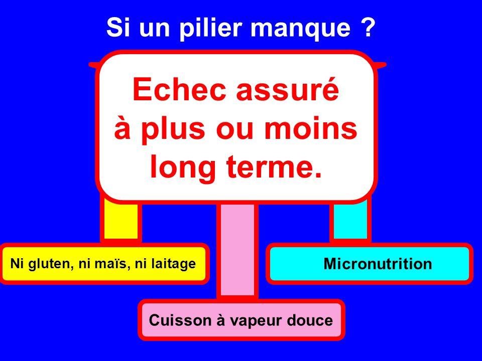 Si un pilier manque ? Ni gluten, ni maïs, ni laitage Cuisson à vapeur douce Micronutrition Echec assuré à plus ou moins long terme.