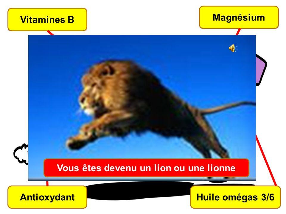 67 Vitamines B Magnésium Huile omégas 3/6Antioxydant Vous êtes devenu un lion ou une lionne