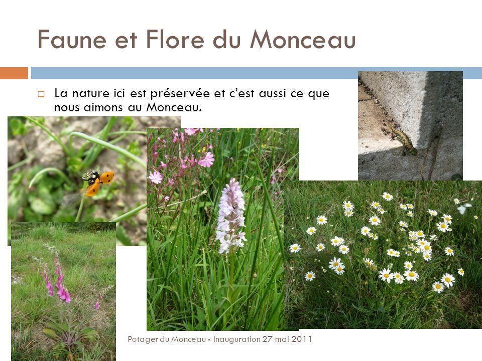 Faune et Flore du Monceau La nature ici est préservée et cest aussi ce que nous aimons au Monceau. Potager du Monceau - Inauguration 27 mai 2011
