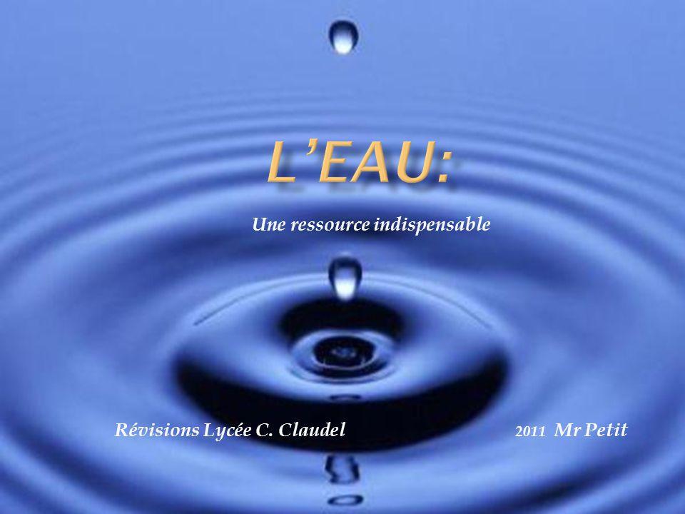 Une ressource indispensable Révisions Lycée C. Claudel 2011 Mr Petit