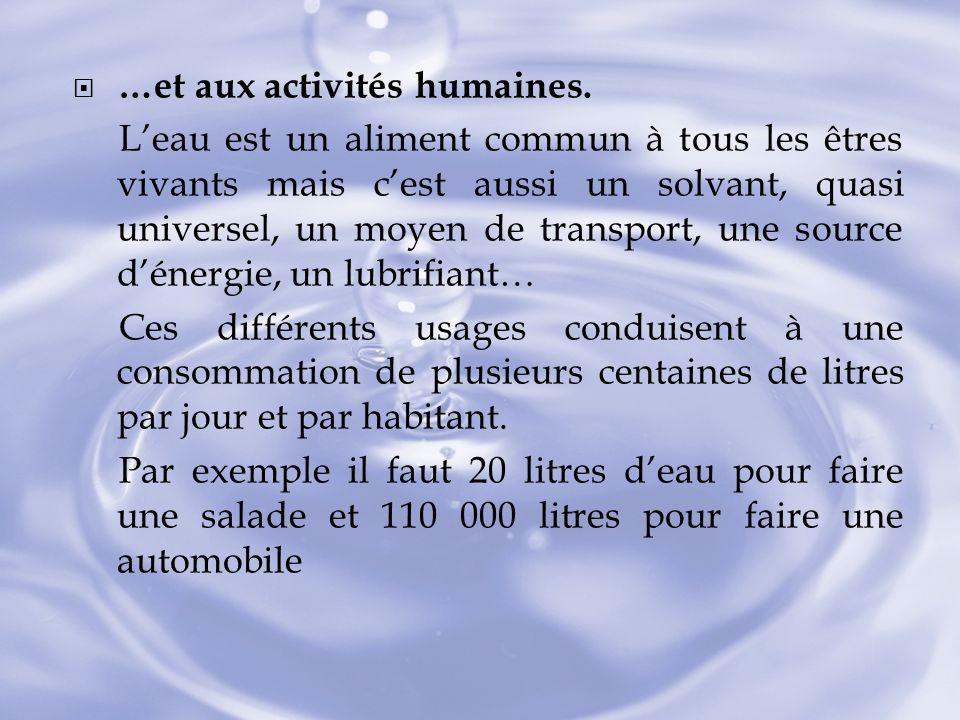 …et aux activités humaines. Leau est un aliment commun à tous les êtres vivants mais cest aussi un solvant, quasi universel, un moyen de transport, un