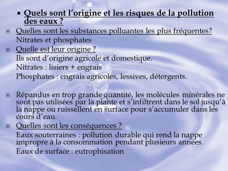 Quels sont lorigine et les risques de la pollution des eaux ? Quelles sont les substances polluantes les plus fréquentes? Nitrates et phosphates Quell