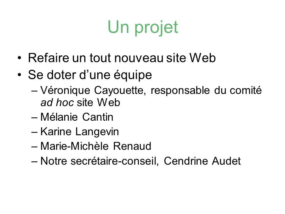 Un projet Refaire un tout nouveau site Web Se doter dune équipe –Véronique Cayouette, responsable du comité ad hoc site Web –Mélanie Cantin –Karine La