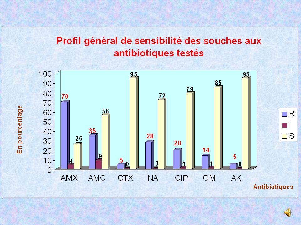 Sensibilité des souches au cotrimoxazole et nitrofuranes T=145 NT=62 T=151 NT=56