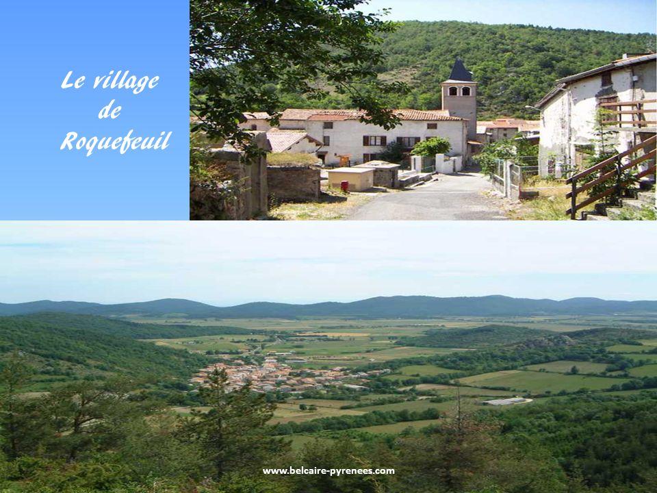 www.belcaire-pyrenees.com Le pla de Niave sur les hauteurs de Belcaire Le pla du Boum près de Comus territoire de lours Balou