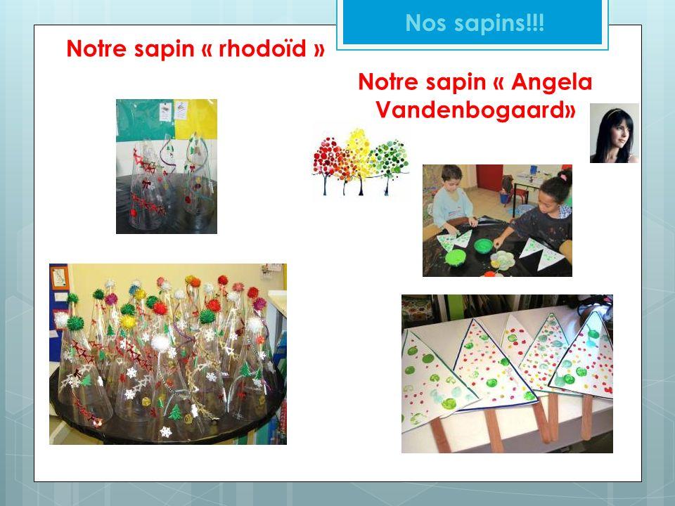 Notre sapin « rhodoïd » Nos sapins!!! Notre sapin « Angela Vandenbogaard»