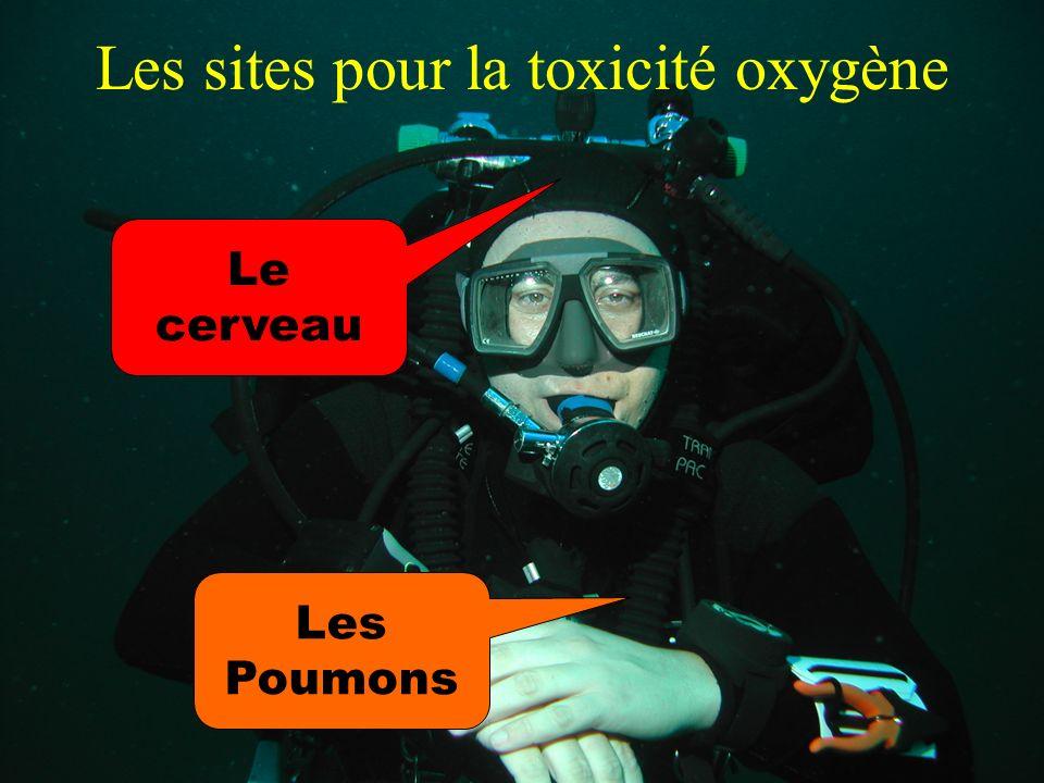 Patrick MICHEL www.plongee-passion-carry.com 31 Les sites pour la toxicité oxygène Le cerveau Les Poumons