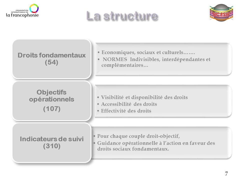 Economiques, sociaux et culturels……. NORMES Indivisibles, interdépendantes et complémentaires… Droits fondamentaux (54) Visibilité et disponibilité de