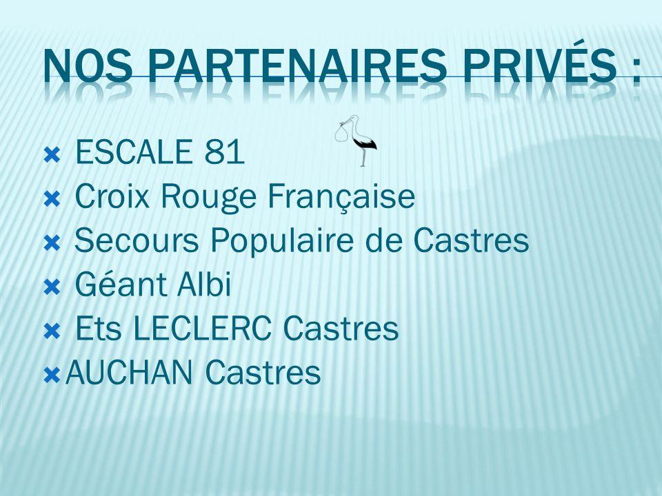 Direction Générale de la Cohésion Sociale Conseil Général du Tarn Caisse dAllocations Familiales du Tarn Office des HLM de Castres Mairie de Castres