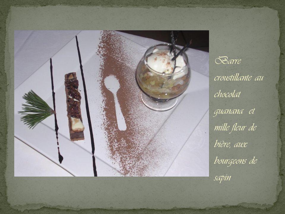 Barre croustillante au chocolat guanana et mille fleur de bière, aux bourgeons de sapin