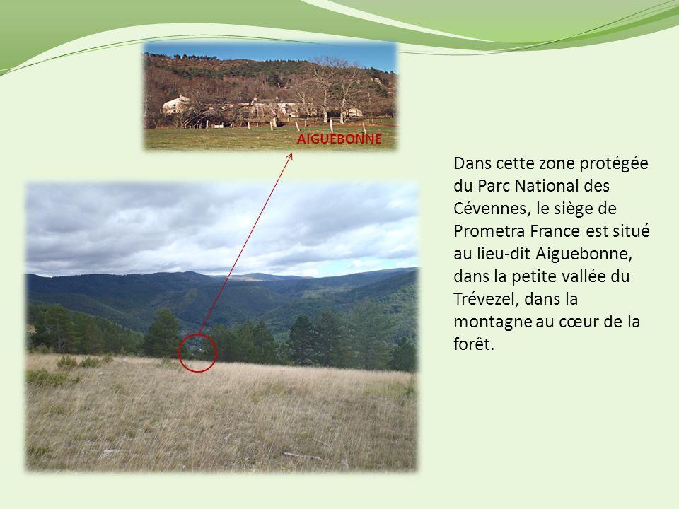 AIGUEBONNE Dans cette zone protégée du Parc National des Cévennes, le siège de Prometra France est situé au lieu-dit Aiguebonne, dans la petite vallée du Trévezel, dans la montagne au cœur de la forêt.