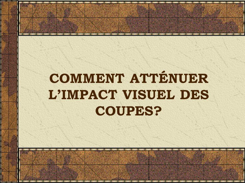 COMMENT ATTÉNUER LIMPACT VISUEL DES COUPES