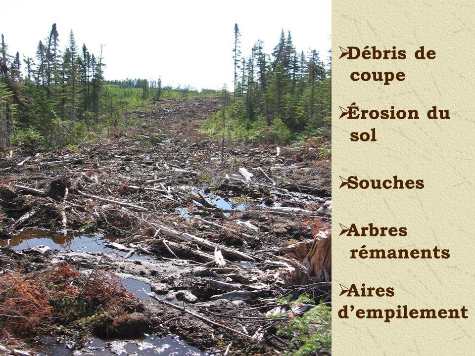 Débris de coupe Érosion du sol Souches Arbres rémanents Aires dempilement
