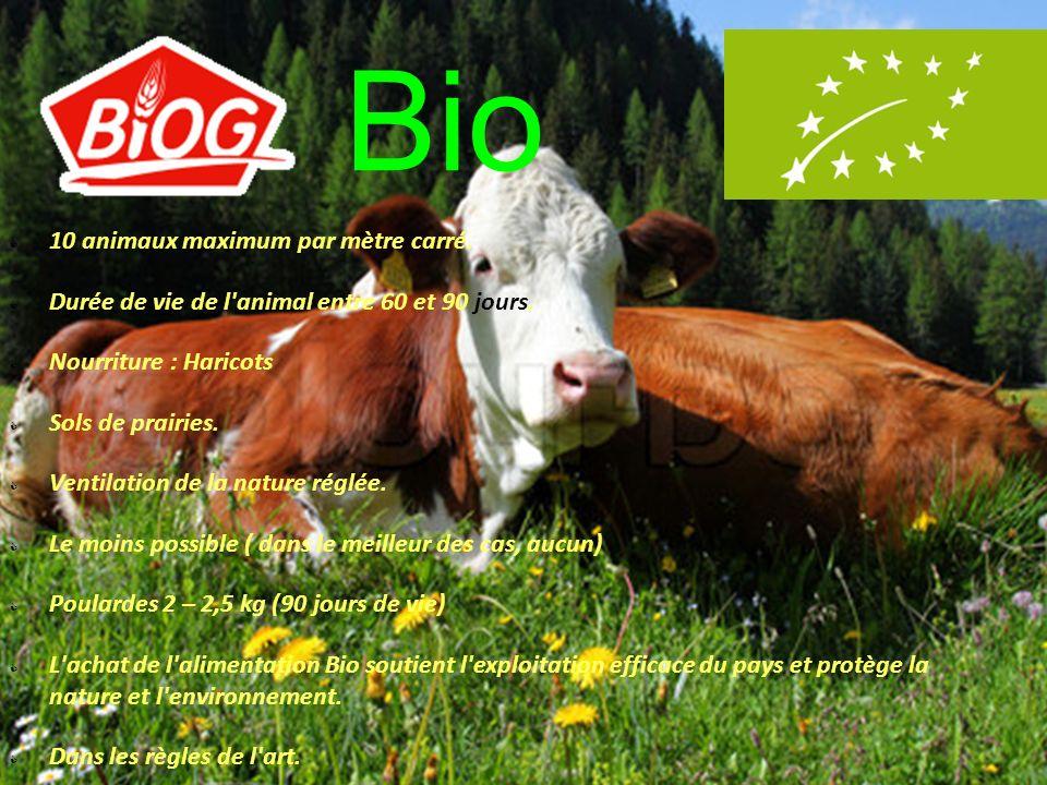 Élevage industriel ou agriculture biologique .