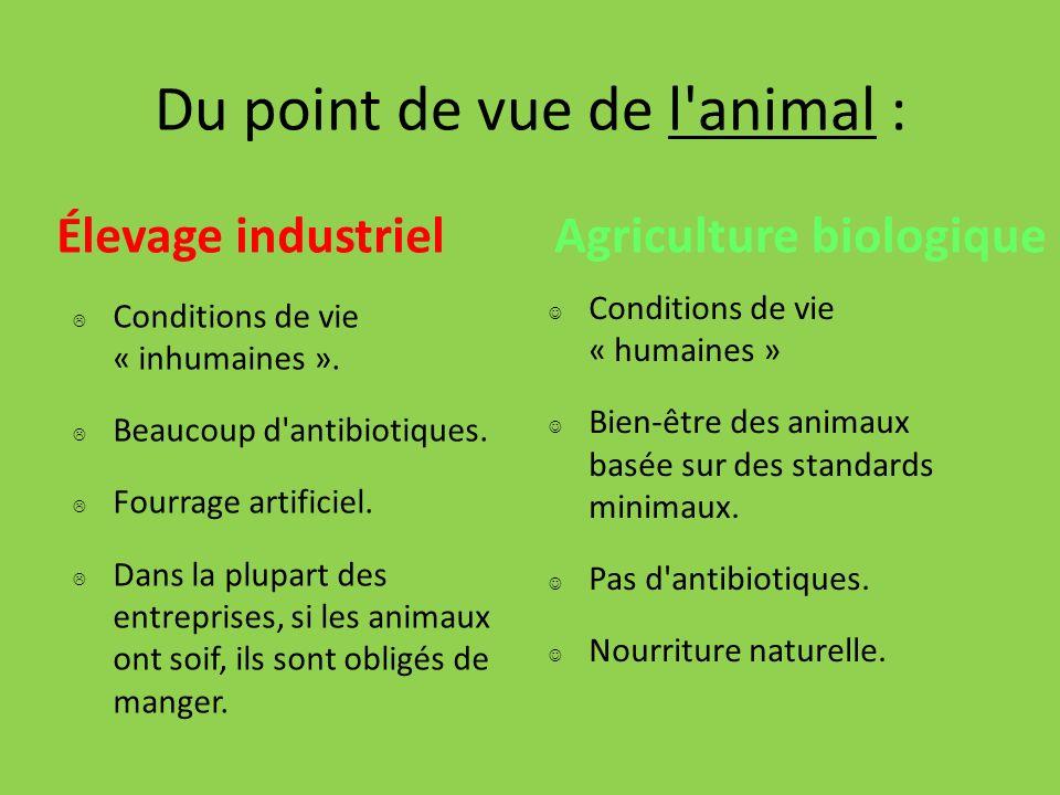 Médicaments pour les animaux dans l élevage industriel.
