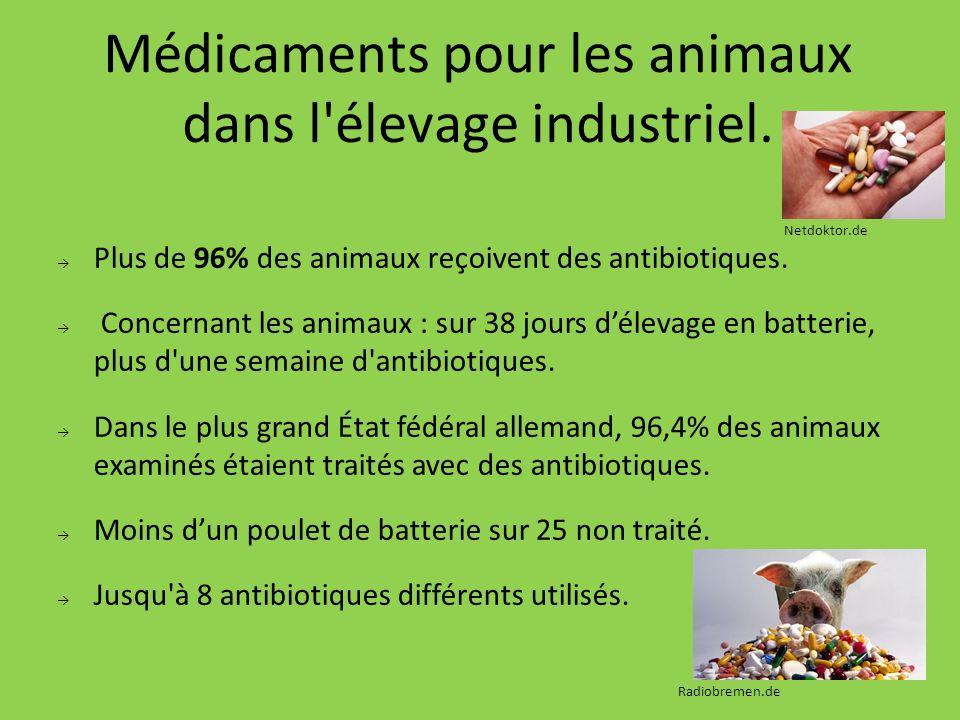 Médicaments pour les animaux dans l'élevage industriel. Plus de 96% des animaux reçoivent des antibiotiques. Concernant les animaux : sur 38 jours dél
