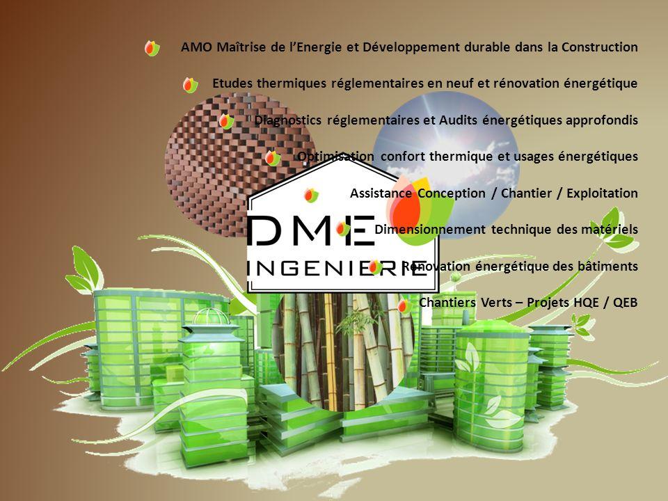 Des compétences au service de la performance AMO Maîtrise de lEnergie et Développement durable dans la Construction Etudes thermiques réglementaires e