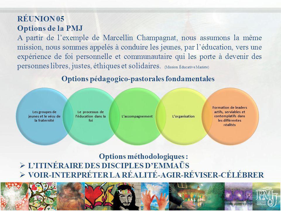 Options de la PMJ A partir de lexemple de Marcellin Champagnat, nous assumons la même mission, nous sommes appelés à conduire les jeunes, par léducati